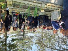 Gazeteci-yazar Hasan Ataman mezarı başında anıldı