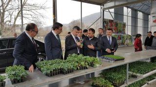 Vali Bektaş, Çaycuma'da tarım ve hayvancılık tesislerini inceledi