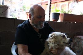 Sahiplendiği köpeğe iki ay sonra kavuşan hayvansever kayıp diğer iki köpeğini de arıyor