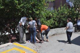 Baba-oğlu bıçaklayan zanlıyı komşuları yakalayarak polise teslim etti