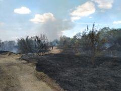 Hatıra ormanında yangın: 2 hektar alan kül oldu
