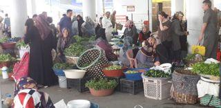 Bozkurt, 15 Ekim Dünya Kadın Çiftçiler Günü'nü kutladı