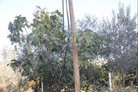 Kabloları çalan hırsızlar 20 köyü internetsiz bıraktı