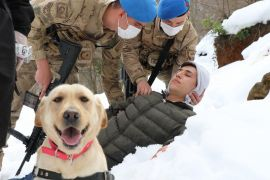 Zonguldak Jandarması'nın 'süper burun' köpekleri