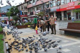 Orman Bölge Müdürlüğü ekipleri Devrek'te kuşları yemledi